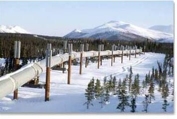 Approximately 423 miles of the 800-mile Trans-Alaska Pipeline is above ground to prevent the hot oil pipeline from thawing potentially unstable permafrost soils.